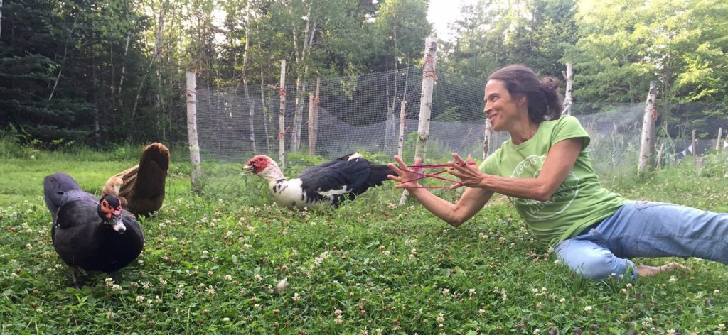 Down time: hanging out with the chickens and muscovy ducks (who are all, by the way, named after Harry Potter characters)