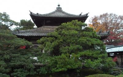 2014-11-26 Japan Temple Inn