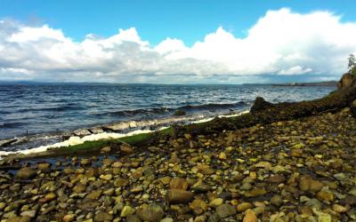Haida Gwaii 3: Workdays and Fatigue