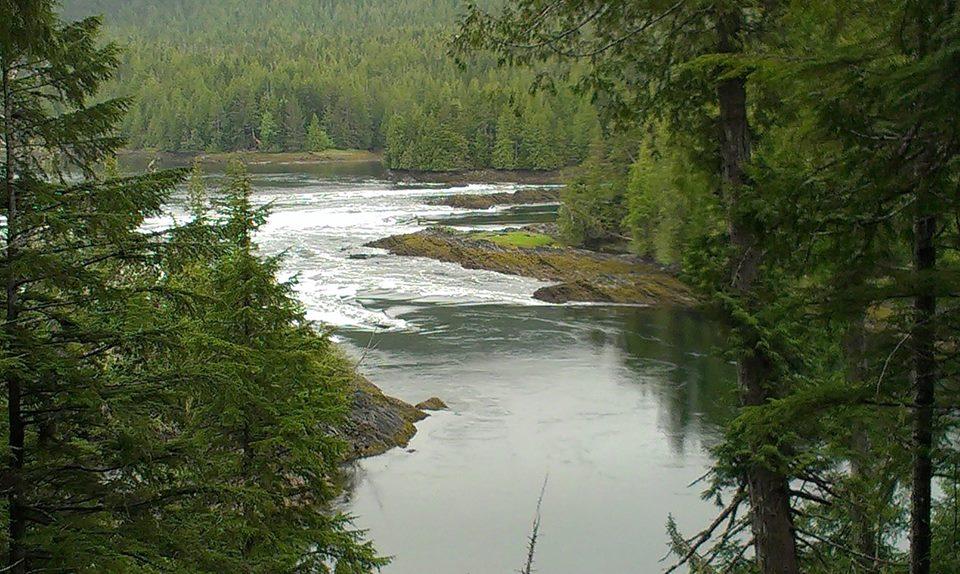 Butze Rapids near Prince Rupert