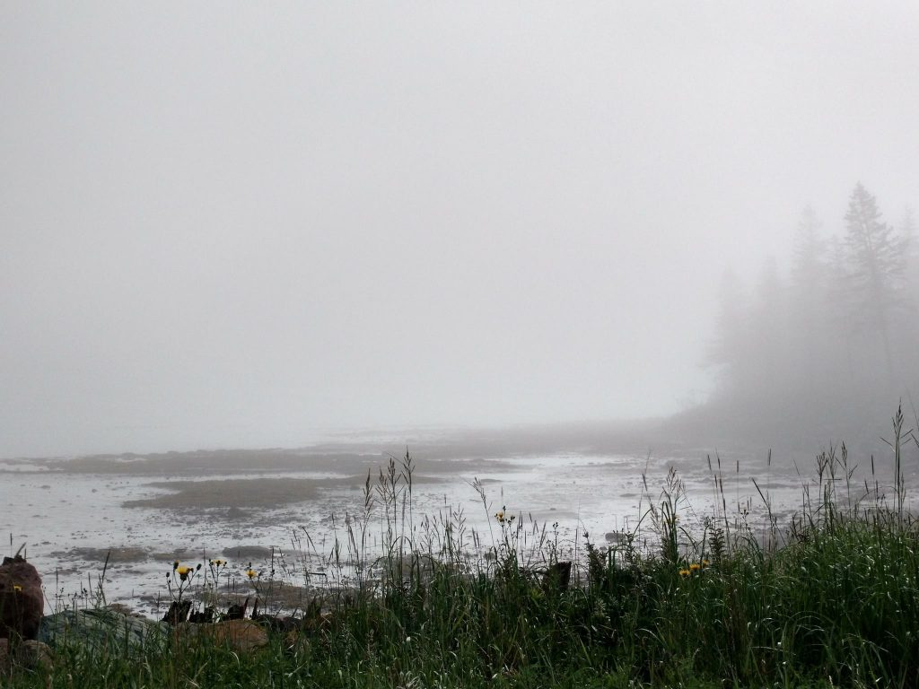 Northumberland Strait, Nova Scotia: Fog at mid-tide